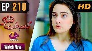 Drama   Kambakht Tanno - Episode 210   Aplus ᴴᴰ Dramas   Shabbir Jaan, Tanvir Jamal, Sadaf Ashaan