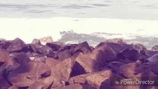 Koottu (കൂട്ട് ) Malayalam short film 2018
