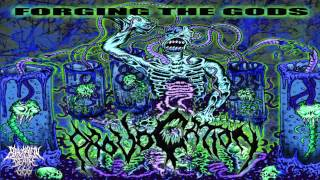 Provocation - Forging The Gods (2012) {Full-Album}