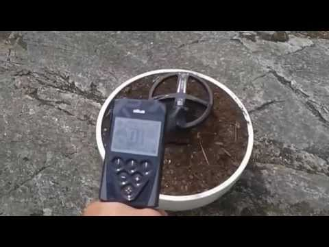 Metal detectors. Cheap VS Expensive.  XP Deus, Garrett, Tesoro