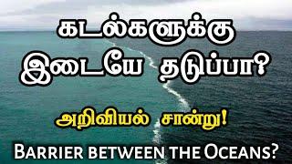 கடல்களுக்கு இடையே தடுப்பா? Barrier between the oceans! - Tamil (Miracle Creation)