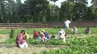 Humro Bihar Chhai Pradhan | Bhojpuri Angika Lokgeet | Shravan Saaj