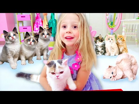 Nastya and her stories about cats and kittens