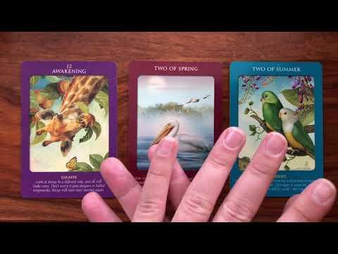 Daily Tarot Reading for 23 September 2018   Gregory Scott Tarot