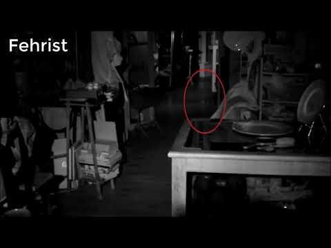 Xxx Mp4 Ajeeb O Ghareeb Makhloq Videos Ajeeb Janwar Mysterious Creature Cought On Camera 3gp Sex