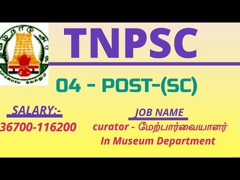 Xxx Mp4 TNPSC Curator In Museum Department மேற்பார்வையாளர் For SC Shortfall Vacancies 3gp Sex