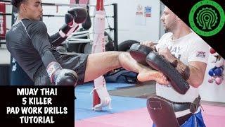 Muay Thai 5 Killer Pad Work Drills to develop Countering Tutorial