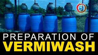 Natural Fertilizer | Preparation and Advantages of Vermiwash