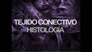 Tejido Conectivo | Histología