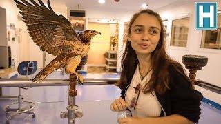 Hayatınızda Hiç ŞAHİN Hastanesi Gördünüz mü? - Katar Vlog