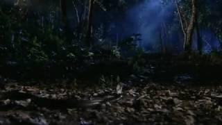 Sssshhh koi hai all episodes(23)