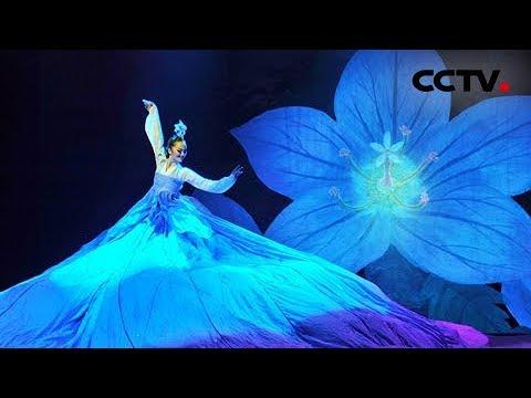 2013年我要上春晚 舞蹈《桔梗谣》 吉林代表团| CCTV春晚