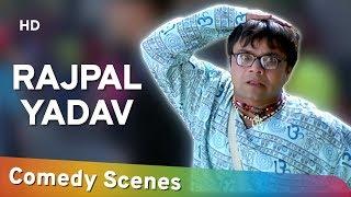 Rajpal Yadav Comedy (राजपाल यादव हिट्स कॉमेडी) - Hit Comedy Scenes - Shemaroo Bollywood Comedy