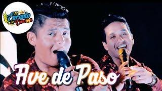 El Encanto de Corazón - Ave de Paso | Video Oficial