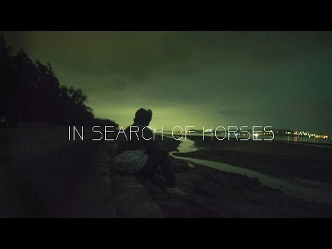 In Search of Horses