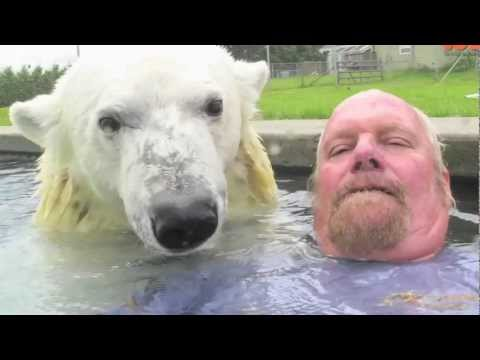 The Only Man In The World Who Can Swim With A Polar Bear Grizzly Man
