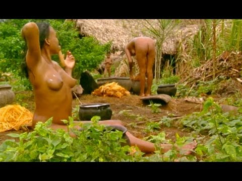 Xxx Mp4 Don Quixote Of The Jungle Part 1 3gp Sex