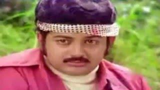 Ilamai Enum Poongatru--இளமை எனும் பூங்காற்று-S P Balasurahmanyam  Melody H D Video Song