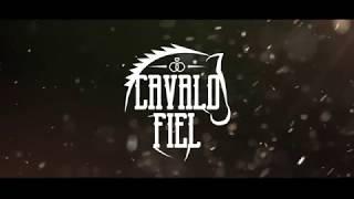 CAVALO FIEL -  JUNIOR VIANNA  (CLIPE OFICIAL)