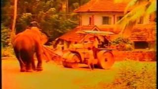 Kuthiravattam Pappu in 'Vellanakalude Naadu'