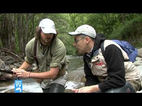 Pianeta Pesca TV 05 06 Puntata del 23 09 2010