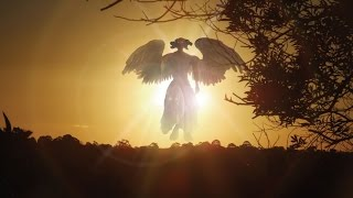 END TIMES SIGNS: LATEST EVENTS (OCT 13, 2016)