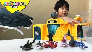 DEEP SEA Animal Toys for Kids - Ocean Creatures like Shark, Orca, Whale, Octopus, Children Playtime