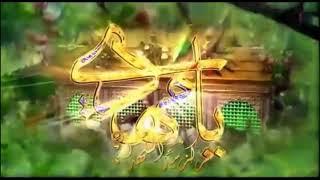مبارك عليكم ولادة الامام المهدي عجل الله فرجه - اللهم عجل في ظهوره