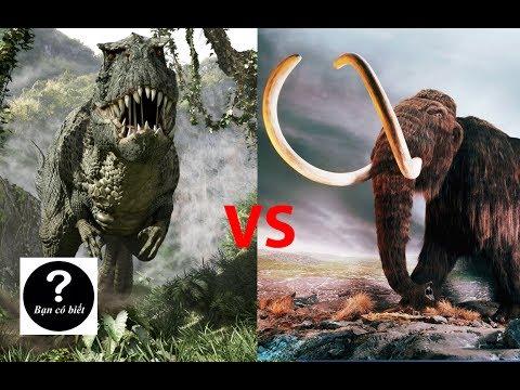 Khủng long bạo chúa T-rex vs Voi Ma-mút, con nào sẽ thắng #6 || Bạn Có Biết?