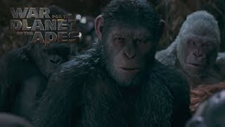 """War for the Planet of the Apes 
