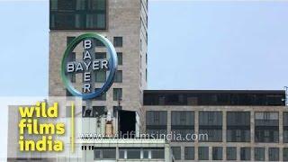 Bayer building, Germany