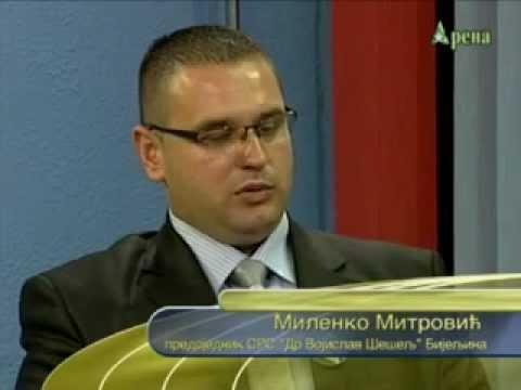 Milenko Mitrovic gostovanje na TV Arena