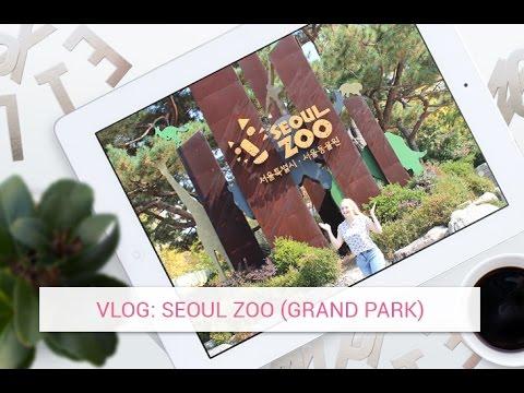 Vlog: Seoul Zoo (Seoul Grand Park)