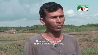 Bangladeshis show great success in fish farming in Uganda