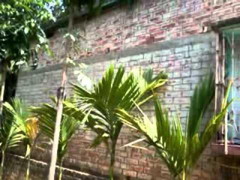 Xxx Mp4 Bangali Boudi 3gp Sex
