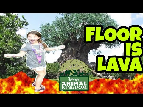 The Floor is Lava at Disney World Animal Kingdom Park!