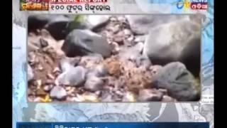 Special Report - NADI GAYAB(20/04/17) - Etv News Odia