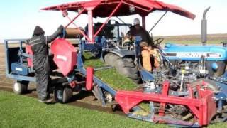 Brouwer Big roll sod Harvester cutting sod