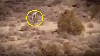 5 Mutants Caught On Camera & Spotted In Real Life!