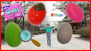 산속에서 서프라이즈 에그 알찾기 놀이 무당벌레 풀 돌 꽃 모양 알까기 카라멜 캔디 장난감 놀이 뉴욕이랑 놀자 NY Toys