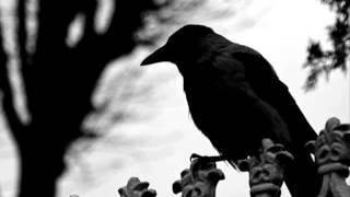 Bleak - Forgotten Days