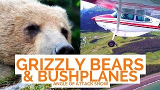 Grizzly Bears and Bush Planes -- Angle of Attack Show EP 1