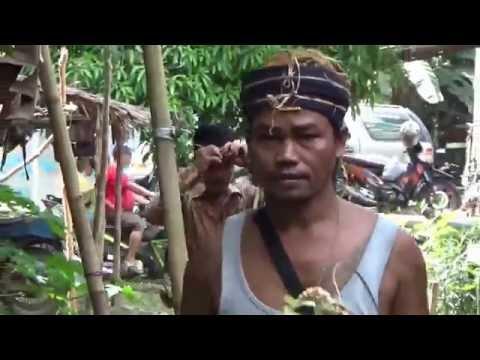 Xxx Mp4 Dokumentasi Buntang Adat Dayak Maanyan 3gp Sex