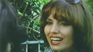 FILME  -   As   Borboletas   Também    Amam     1979