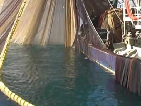 Gırgır balıkçı teknesini ağını toplarken görüntülüyoruz