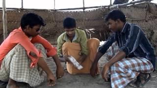 The Vetti Boys - தீவெட்டி பாய்ஸ் Tamil Short film 720p