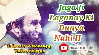 Jaga Ji Laganay Ki Dunya Nahi Hai ❤️ Maulana Tariq Jameel Poetry Whatsapp Status Video ❤️