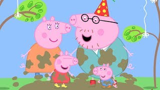 Peppa Pig po Polsku najlepsze odcinki - Urodziny tatusia Swinki - Świnka Peppa