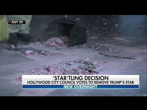 Xxx Mp4 West Hollywood City Council Votes To Remove Trump S Hollywood Walk Of Fame Star 3gp Sex