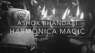 Mera Dil Ye Pukare Aaja Nagin Mouth  organ version Ashok Bhandari